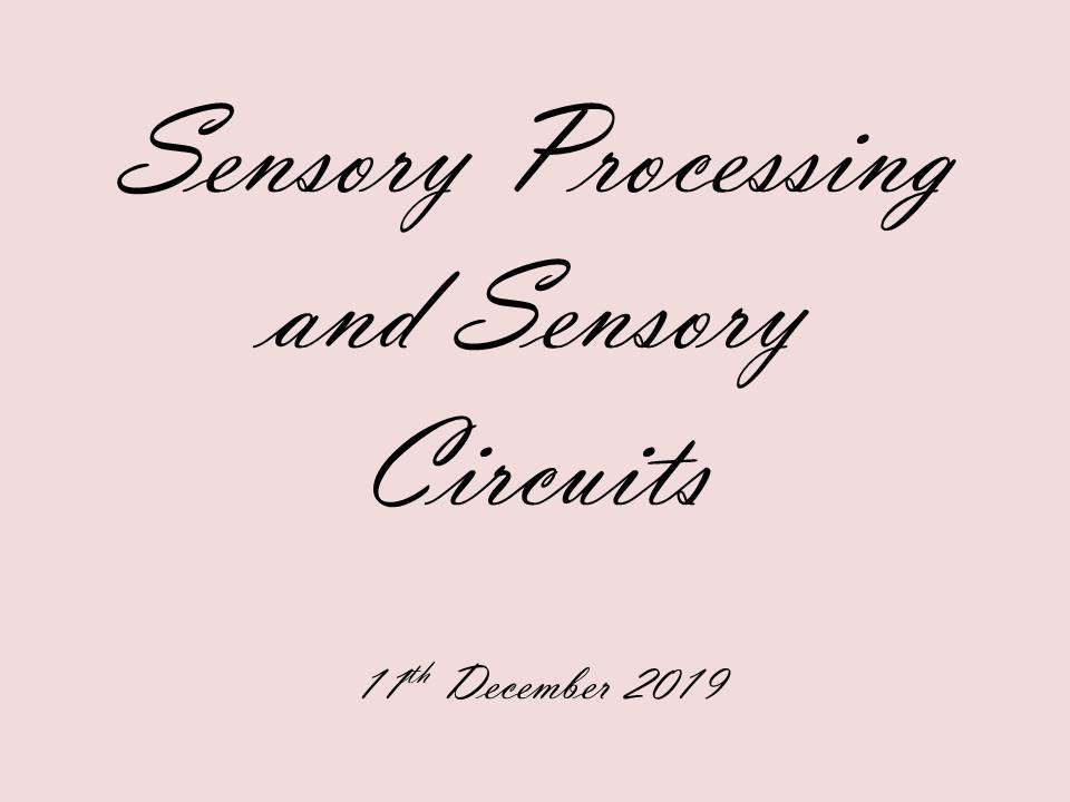 Miss Leadbetter: Sensory Processing and Sensory Circuits