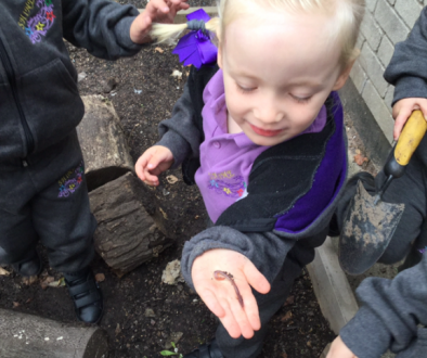 Digging for worms.